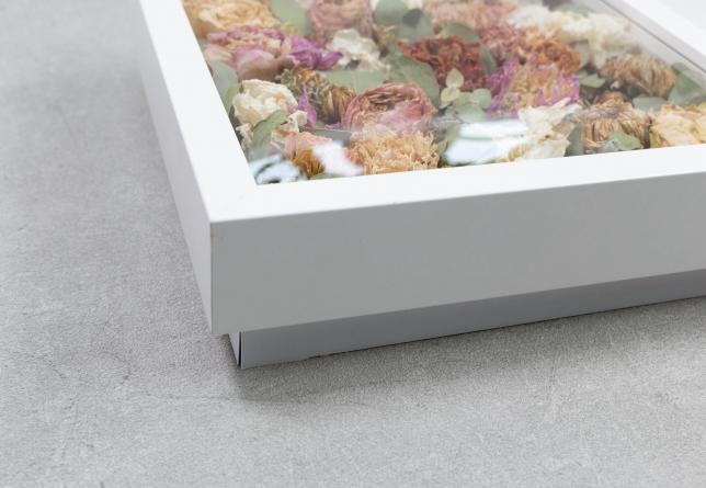 Blumen im Bilderrahmen.
