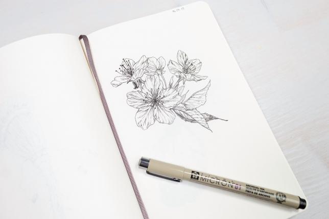 Skizzenbuch mit meiner Kirschblütenzeichnung